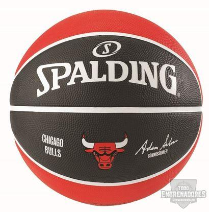 Foto de NBA TEAM CHICAGO BULLS