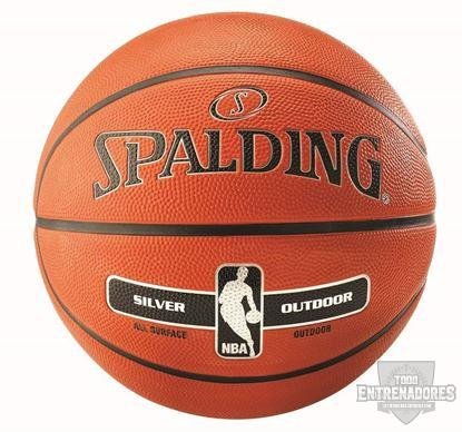 Foto de Balón NBA silver outdoor